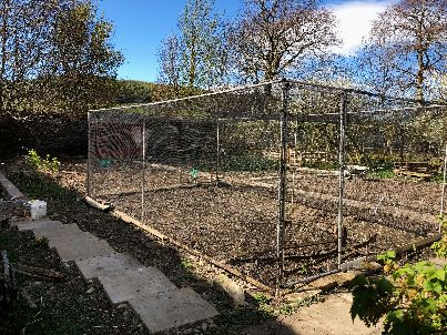 New fruit cage - 05052018