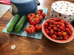 Garden produce - 31082018