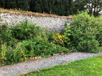 Herb border 3 - 17072018