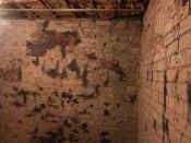 Annex walls - 06112018