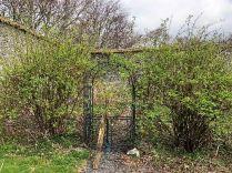 Arch in garden - 30032019