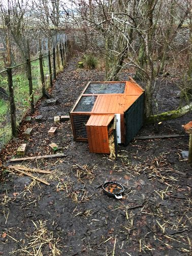 Hen house blown over - 15122018