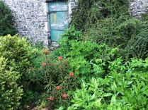 Herb border - 01062019