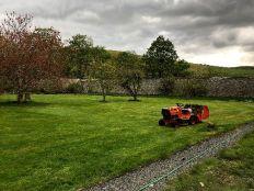 Lawn - 1st cur - 28042019