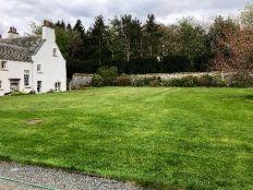 Lawn - first cut - 28042019