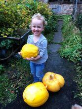 Pumpkins 1 - 11102018