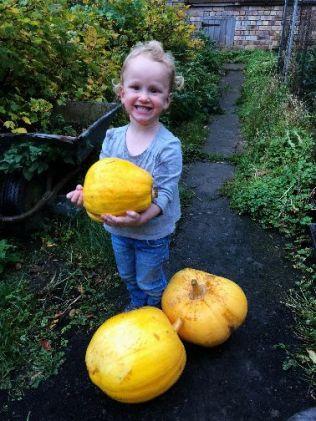 Pumpkins 2 - 11102018