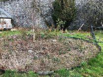 Rose garden - 30032019