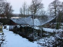 Snow 1 - 23012019