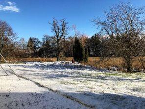 Snow 3 - 02022019
