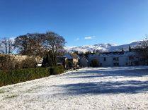 Snow 8 - 02022019