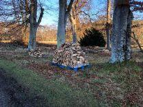 Timber processing - 18112018