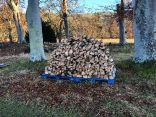 Timber processing 2 - 18112018