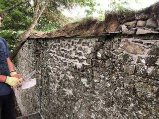 Garden walls 1 - 27082019