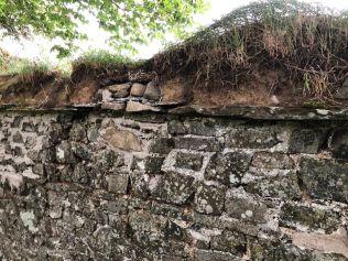 Garden walls 2 - 27082019