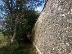 Garden Walls 4 - 09102019