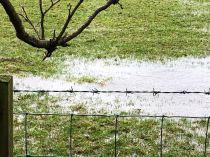 Flooding 17 - 09022020