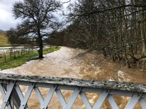 Flooding 19 - 09022020