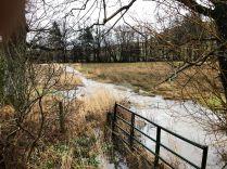 Flooding 4 - 09022020