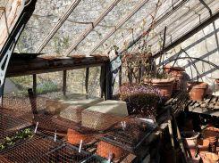glasshouse 2 - 18042020