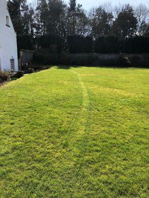 Grass - 1st Cut 2 - 25032020