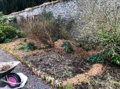 Herb border 1 - 29032020
