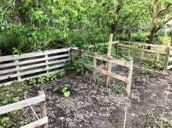 Kids gardens - 08062020
