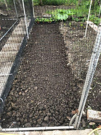 Prepared soil in cage - 17062020