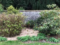 Rhod garden 2 - 09052020