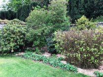 Rhod garden 3 - 09052020