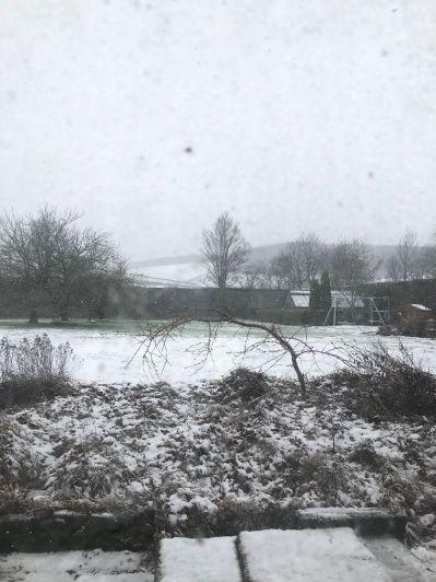 Snow 1 - 11022020