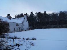 Snow 1 - 12022020