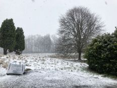 Snow 2 - 11022020
