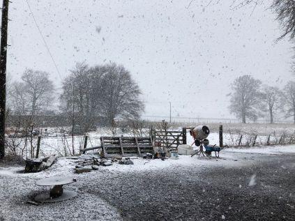 Snow 4 - 11022020