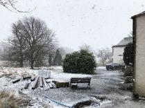Snow 5 - 11022020