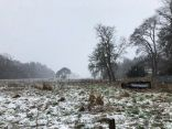 Snow 7 - 11022020