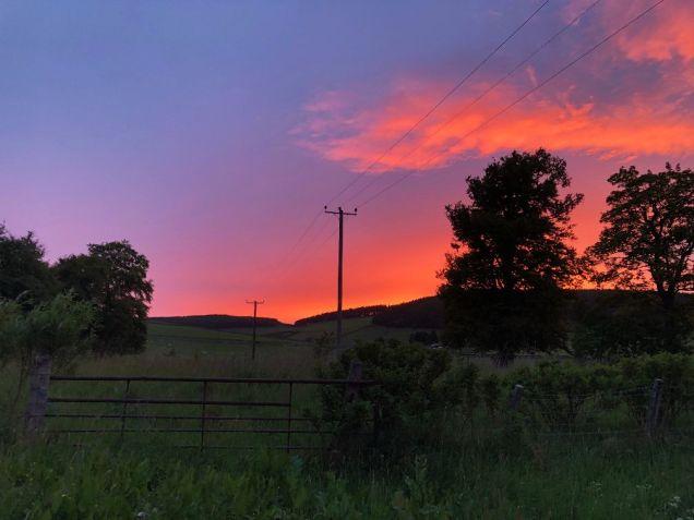 Sunset 2 - 11062020