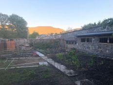 Veg garden - 31052020